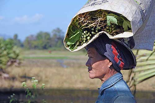 carrying vegetables on head-AsiaPhotoStock
