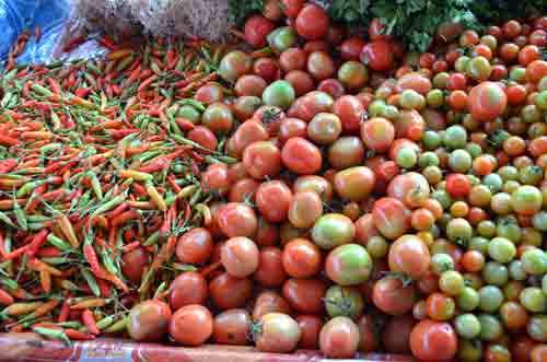 tomatoes and chillis-AsiaPhotoStock