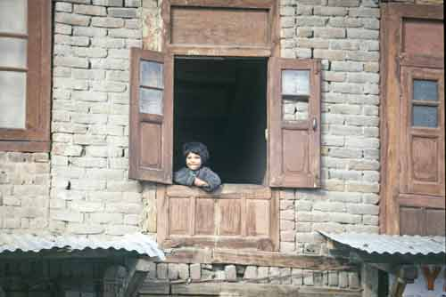 window srinagar-asia photo stock
