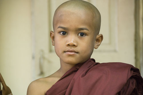 young monk-asia photo stock